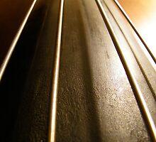 Bass Strings, Calhoun Road by Nicole Bouch