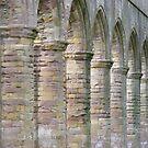 Fountains Abbey Arches by monkeyferret