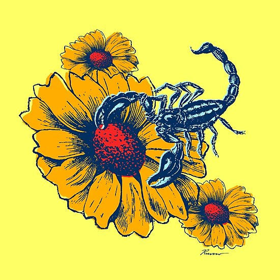 Scorpion Flowers by Will Ruocco