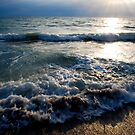 Tide by Trenton Purdy