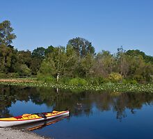 Kayak at Rest by Barb White