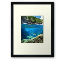 Mediterranean cove and rocky seabed with fish underwater Framed Print