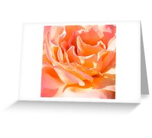 Nested Petals Greeting Card