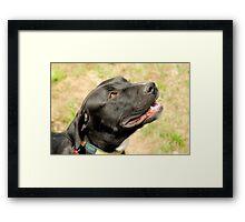 Good Girl Framed Print
