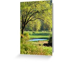 Nothing As Refreshing As The New Colors Of Springtime :)) Greeting Card