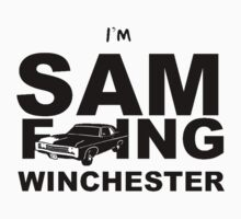 Sam F---ing Winchester 2 by twinRenegade