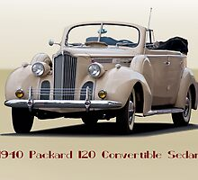 1940 Packard 120 Convertible Sedan II by DaveKoontz
