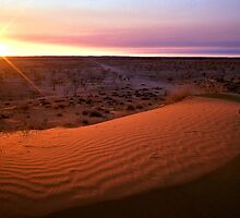 "Sunrise over ""Big Red"" dune - Birdsville, QLD by graphicscapes"