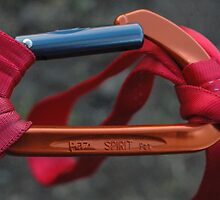 "Marketing - ""Petzl Carabiners - Strength Beyond Measure"" by Alyson  Prokop"