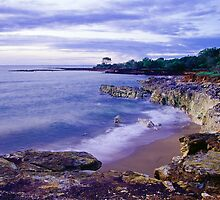 East Point Reserve - Darwin, NT by graphicscapes