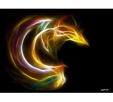 Curves 1 - Fractal Flame Photographic Print