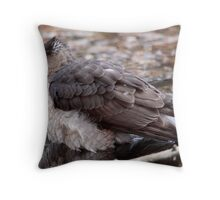 Coopers Hawk Taking A Bath Throw Pillow