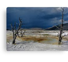 Rusted Earth Canvas Print