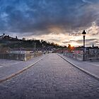Wrzburg - Panoramic View by Michael Breitung