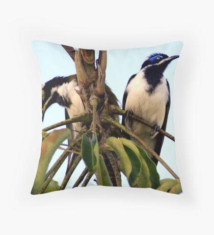 Blue Faced Honey Eater Pair Throw Pillow