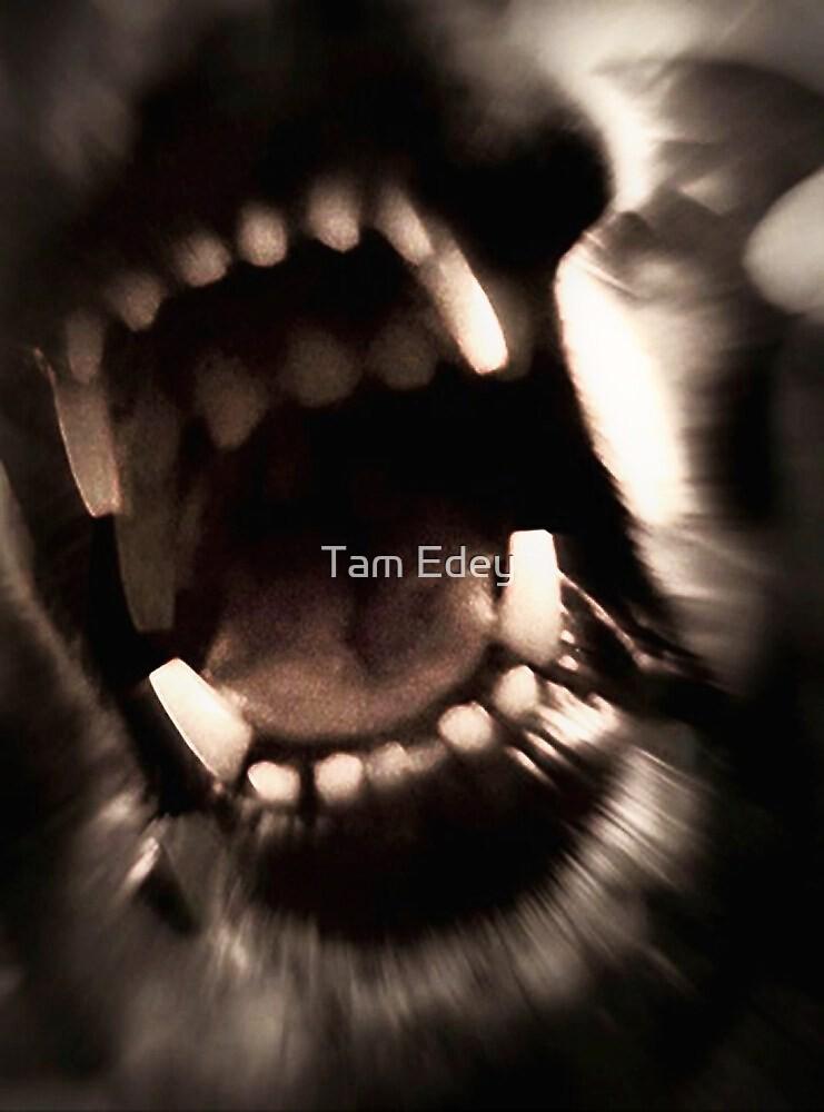 With Teeth by Tam Edey