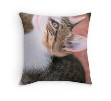Tabby kitten 9 Throw Pillow