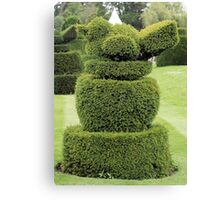 Robin topiary Canvas Print