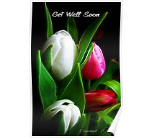 Get Well Soon ( for Sherri) Poster