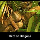Here be dragons by Vanessa Pike-Russell