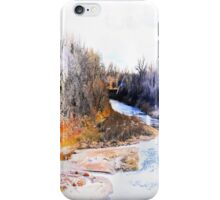 Flying Home iPhone Case/Skin