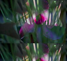 Flowers and muted tones by Keith Vander Wees