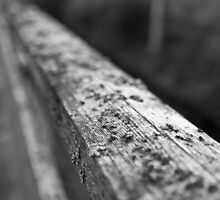 An old handrail by SunDwn