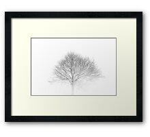 Tree Skeleton Framed Print