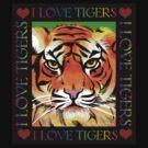 Digital Sketchy Tiger Hoodie (23 min) by Patricia Anne McCarty-Tamayo