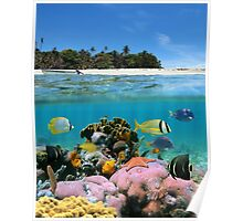 Beach and coral reef Poster