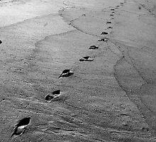 SANDY FOOTSTEPS IN GRAY by Paul Quixote Alleyne
