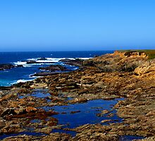 Point Cabrillo Lighthouse, Mendocino by Stephen Burke