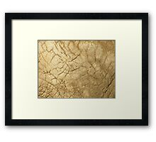 Guess what? Framed Print