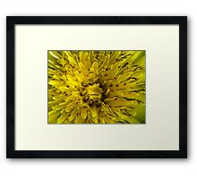 ©NS Green Yellowed IA. Framed Print