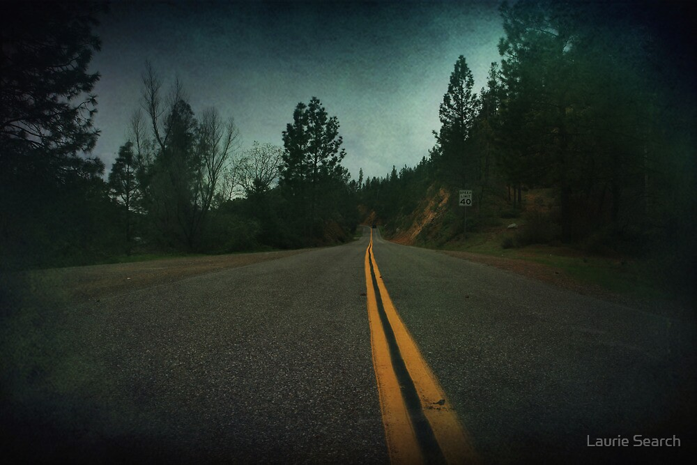 Middle of the Road by Laurie Search