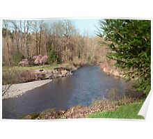 River Beach with Rocky Wall and Flowering Trees Poster