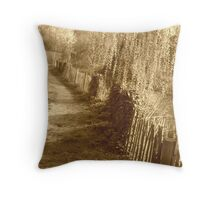 On the beaten track Throw Pillow