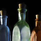 Glass Bottles by susan stone