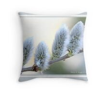 Pussywillow blooms Salix C Throw Pillow