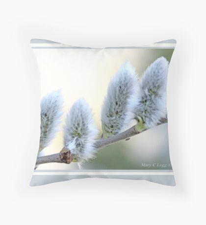Pussywillow blooms Salix C Throw Pillow