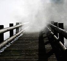 Into the Mist by Lynn Stratton