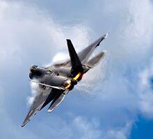 F-22 Raptor by Janet Fikar
