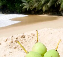 Beach Fruits by Walter Quirtmair
