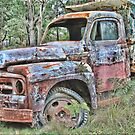 The Old Truck by Kym Howard