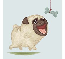 Happy Pug and bone Photographic Print
