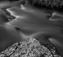 Moss River Rock in Black and White by CoreySmith