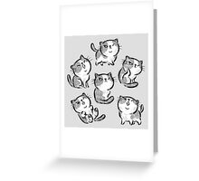 Six Impudent cats Greeting Card