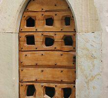 Wooden Door by CherylC