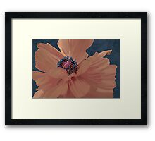 Color Theory, complimentary colors, poppy damask floral Framed Print