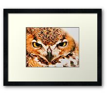 Owl Be Seeing You Framed Print